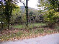 Plot 1 km from the town of Troyan
