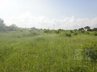 Plot for building a house in a green area near Varna