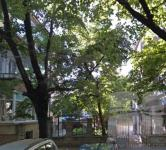 Excellent building land near the Municipal building of Varna